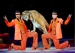 Unforgettable emotions in St. Petersburg from enchanting circus show of the legendary Zapashny brothers